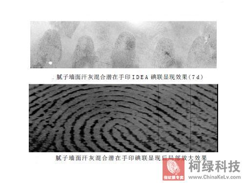 碘银板转印显现指纹纹路的方法