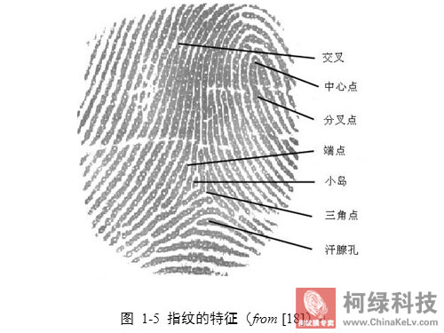 捺印指纹纹路的一般方法