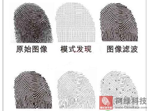 个人指纹信息